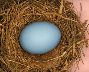 3 Questions to Ask Yourself Before You Invest in a 401(k) Plan