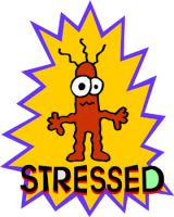 Less Stress Starting Today