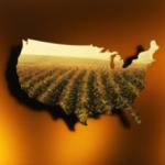 state_nexus
